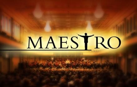 maestro muziekschool Boedijn